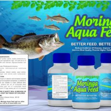 Aqua-Feed-Bottle-Packaging.jpg